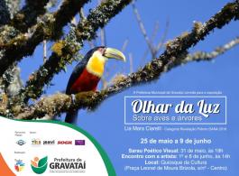 Prefeitura apresenta exposi��o 'Olhar da Luz: Sobre aves e �rvores'