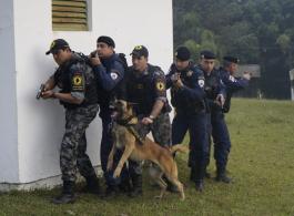 Guarda Municipal e 17� Batalh�o da Pol�cia Militar promovem treinamento integrado de Seguran�a P�blica
